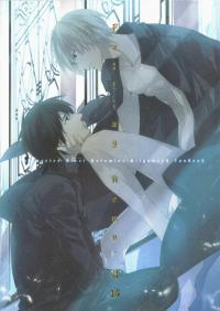 Fate/Zero dj - Falling Down (CARNEVALE9)