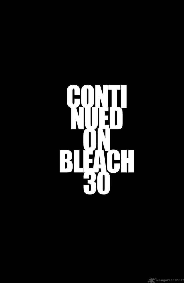 Bleach 260